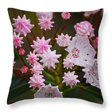 Waiting To Burst Throw Pillow