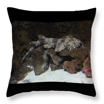 Waiting To Eat You - Spotted Wobbegong Shark Throw Pillow
