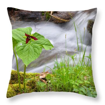 Wake Robin By Stream Throw Pillow by Alan Lenk