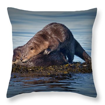 Throw Pillow featuring the photograph Wake Up by Randy Hall