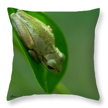 Wake Up Time Throw Pillow