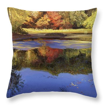 Walden Pond II Throw Pillow by Art Chartow