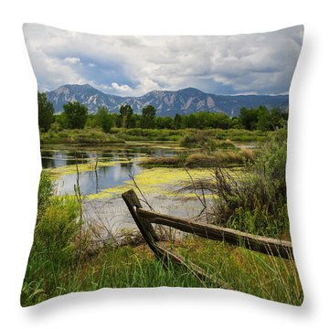 Waldon Ponds Throw Pillow