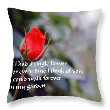 Walk In My Garden Throw Pillow by Gary Wonning