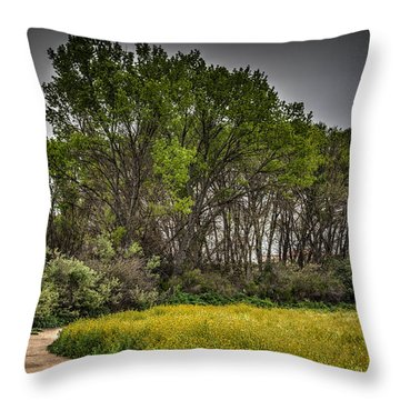 Walk In The Meadow In Spring Throw Pillow