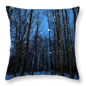 Walk In The Snowy Woods Throw Pillow