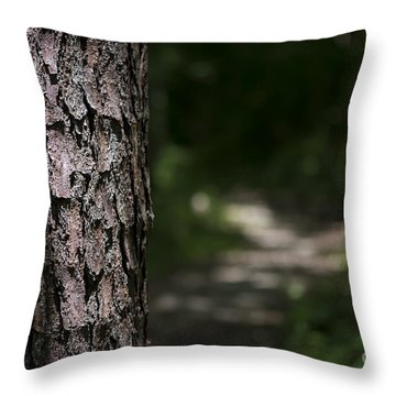 Walk In The Woods Throw Pillow by Andrea Silies