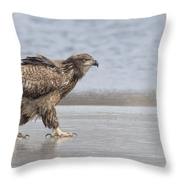Walk Like An Eagle Throw Pillow by Kelly Marquardt