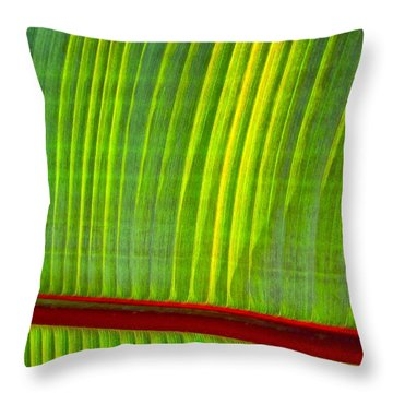 Walk The Line Throw Pillow by Gwyn Newcombe