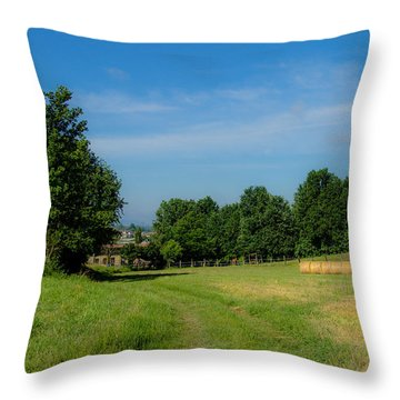 Walk To The Countryside  Throw Pillow by Cesare Bargiggia