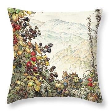 Coloured Throw Pillows