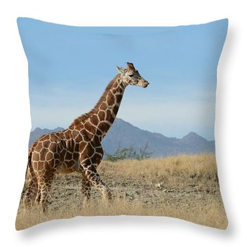 Walkabout 3 Throw Pillow