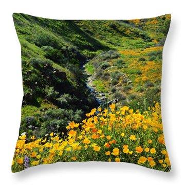 Walker Canyon Vista Throw Pillow