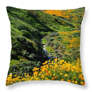 Throw Pillow featuring the photograph Walker Canyon Vista by Glenn McCarthy Art and Photography