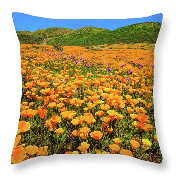 Walker Canyon Wildflowers Throw Pillow
