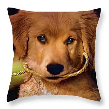 Walkies...pleeease Throw Pillow by Steve Harrington