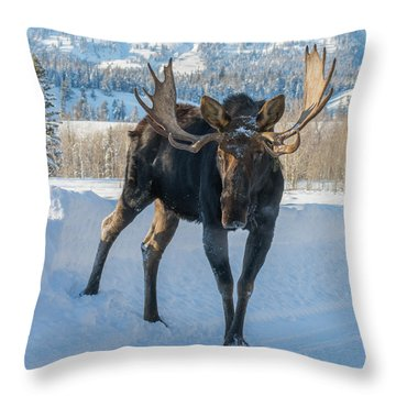 Walkin' The Road Throw Pillow