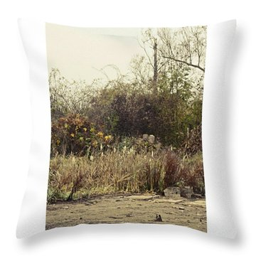 Walking By The Lake  #landscape #lake Throw Pillow by Mandy Tabatt