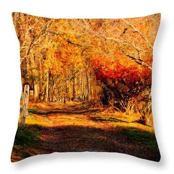 Throw Pillow featuring the photograph Walking Down The Autumn Path by Jeff Folger