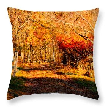 Walking Down The Autumn Path Throw Pillow