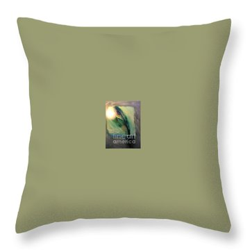 Walking In Your Light  Throw Pillow by FeatherStone Studio Julie A Miller