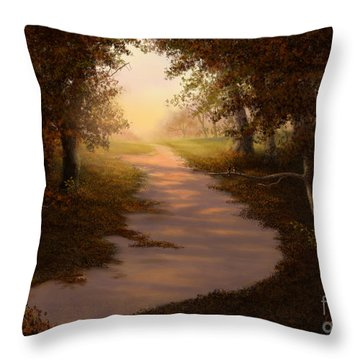 Walking Into The Light Throw Pillow by Sena Wilson