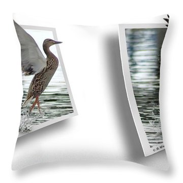 Walking On Water - Gently Cross Your Eyes And Focus On The Middle Image Throw Pillow by Brian Wallace