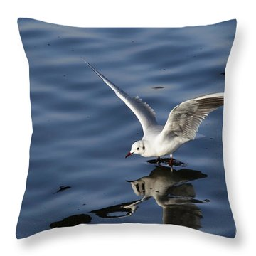 Walking On Water Throw Pillow by Michal Boubin