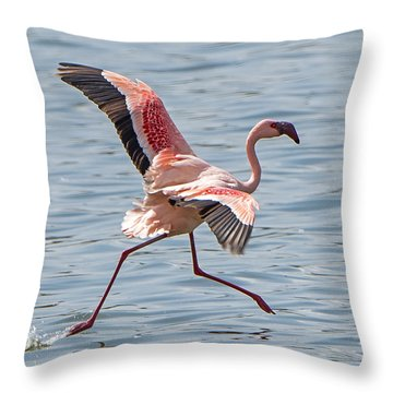 Walking On Water Throw Pillow