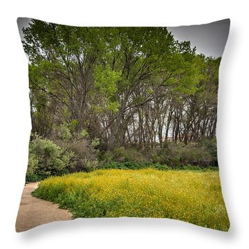 Walking Path In Tall Oak Trees In Spring Throw Pillow