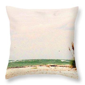 Walking The Beach Throw Pillow by Ian  MacDonald