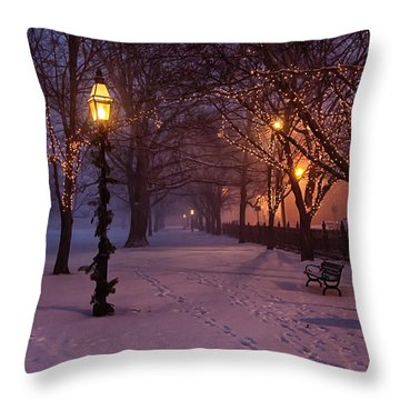 Walking The Path On Salem Common Throw Pillow by Jeff Folger