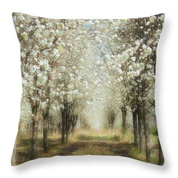 Throw Pillow featuring the photograph Walking Through A Dream I by Dan Carmichael
