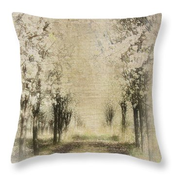 Throw Pillow featuring the painting Walking Through A Dream IIi by Dan Carmichael