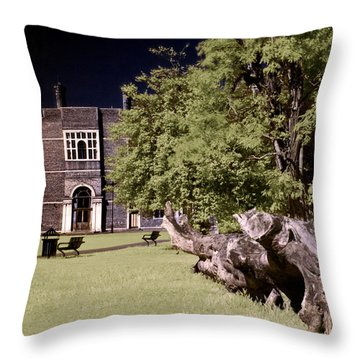 Walking To The Library Throw Pillow by Helga Novelli