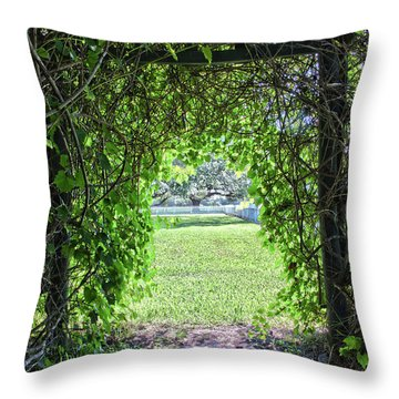 Walkway From Greenhouse Throw Pillow