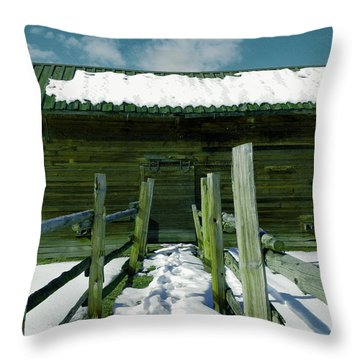 Throw Pillow featuring the photograph Walkway To An Old Barn by Jeff Swan