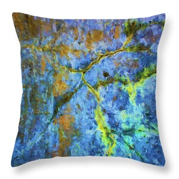 Wall Abstraction I Throw Pillow