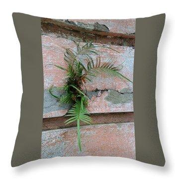 Wall Fern Throw Pillow