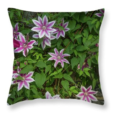 Throw Pillow featuring the photograph Wall Flowers by Chris Scroggins