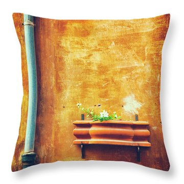 Throw Pillow featuring the photograph Wall Gutter Vase by Silvia Ganora