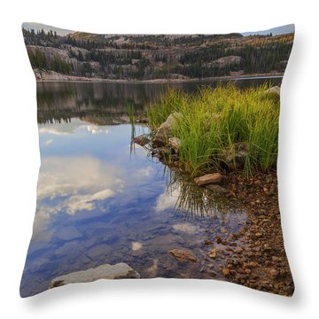 Wall Lake Throw Pillow by Chad Dutson