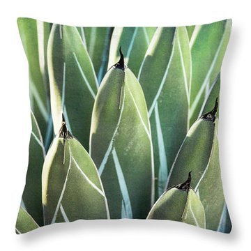 Throw Pillow featuring the photograph Wall Of Agave  by Saija Lehtonen