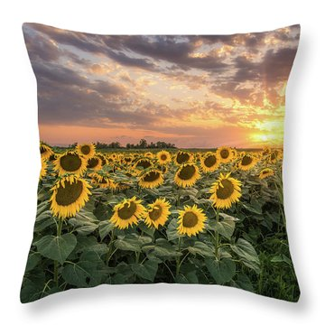 Wall Of Sunflowers Throw Pillow