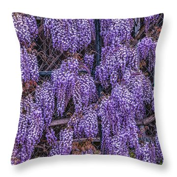 Wall Of Wisteria Throw Pillow