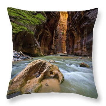 Wall Street Of The Narrows Throw Pillow