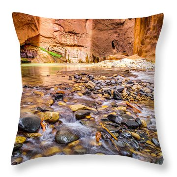 Wall Street Zion National Park Throw Pillow