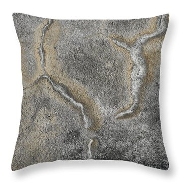 Wall Texture Number 3 Throw Pillow
