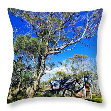 Wallace Hut Throw Pillow