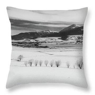 Throw Pillow featuring the photograph Wallowa Mountains by Cat Connor